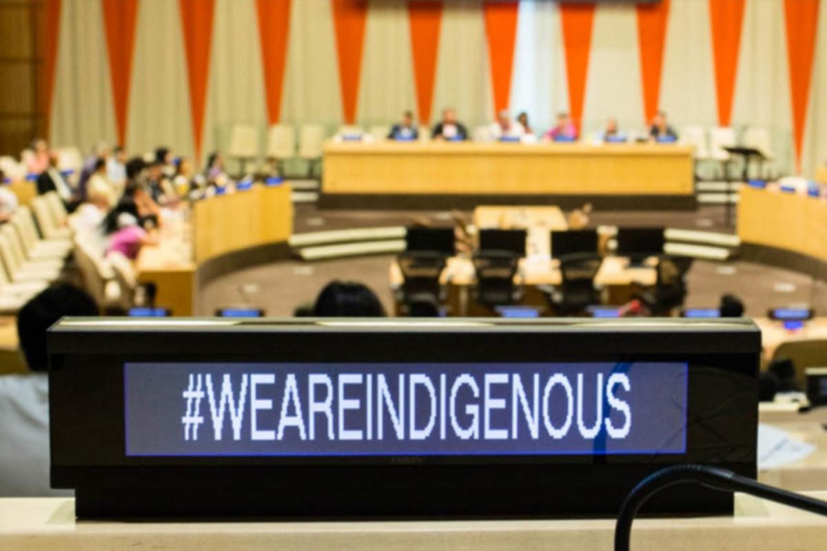 На сессии в ООН представили лучшие практики работы с коренными народами российского Севера